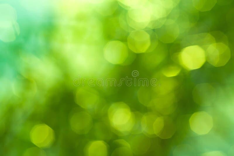Fondo borroso verde natural imagen de archivo libre de regalías