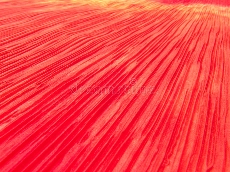 Fondo brillante 6 del color fotos de archivo libres de regalías