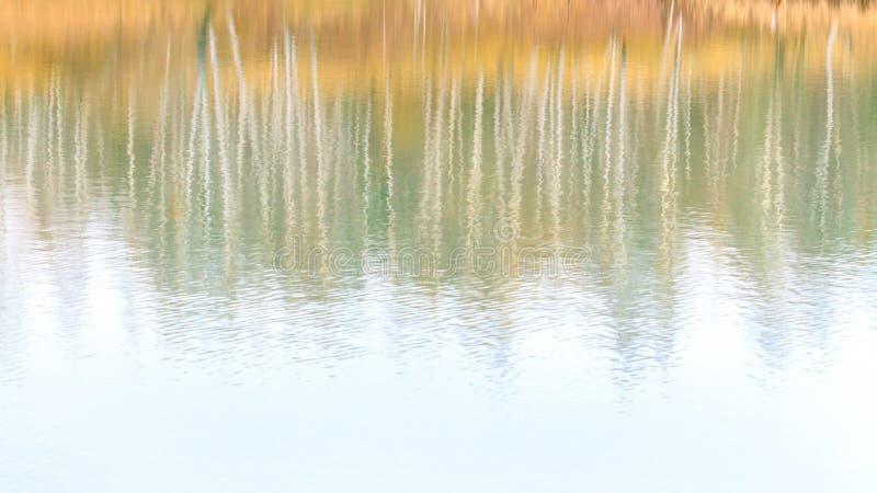 Fondo brillante borroso extracto de la caída en sombras en colores pastel Reflexi?n del bosque del oto?o en el lago imagen de archivo