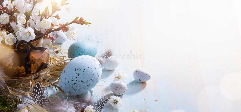 Fondo brillante de Pascua; Flores de la cesta y de la puntilla de los huevos de Pascua en fondo azul de la tabla foto de archivo