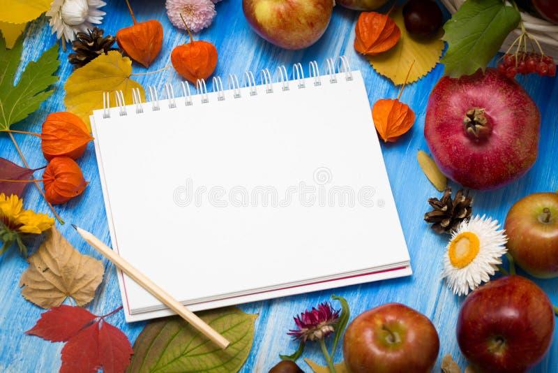 Fondo brillante del otoño Cuaderno para la inscripción Flores, hojas y frutas en un fondo de madera azul Fondo para imagenes de archivo