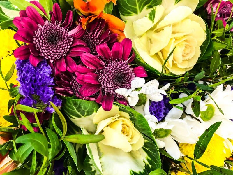 Fondo brillante, textura de diversas flores frescas imagen de archivo