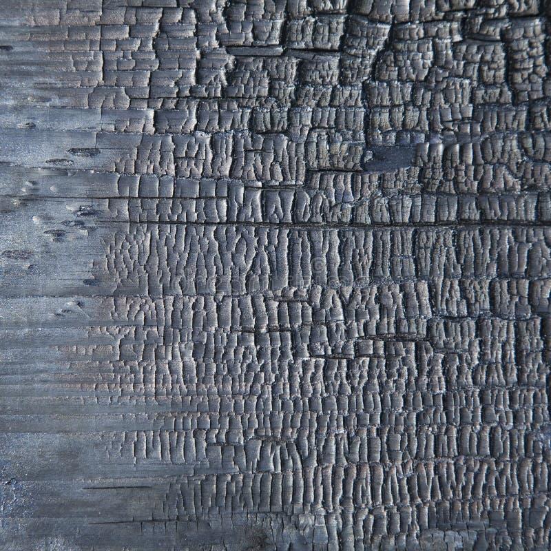 Fondo bruciato di legno immagini stock
