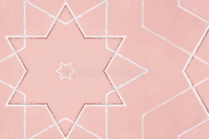 Fondo color de rosa ornamental Elementos color de rosa decorativos del vintage fotos de archivo libres de regalías