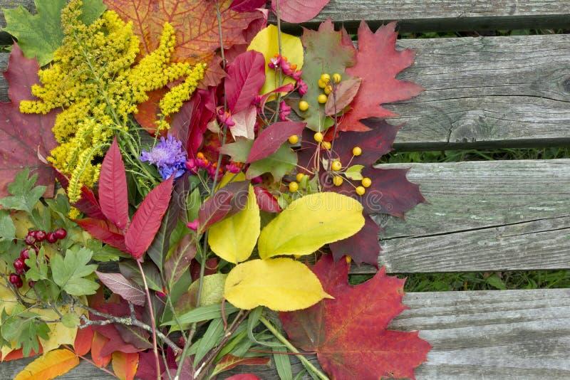 Fondo - colores del otoño fotografía de archivo libre de regalías