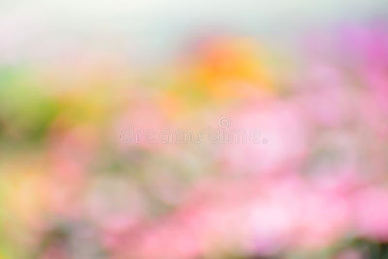 Fondo colorido abstracto de la primavera fotografía de archivo libre de regalías