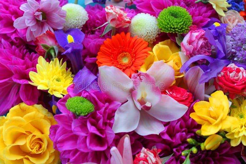 Fondo colorido de las flores imagenes de archivo