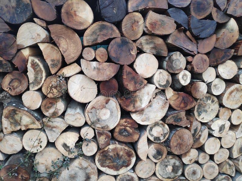 Fondo colorido de troncos de árbol apilados foto de archivo libre de regalías