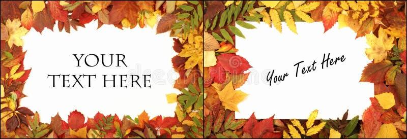 Fondo colorido del otoño stock de ilustración