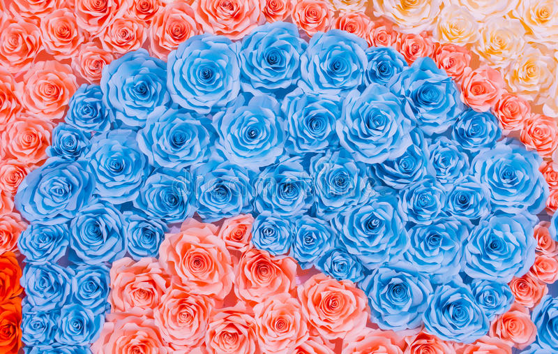 Fondo colorido del papel de la flor de la rosa del arco iris abstracto fotografía de archivo