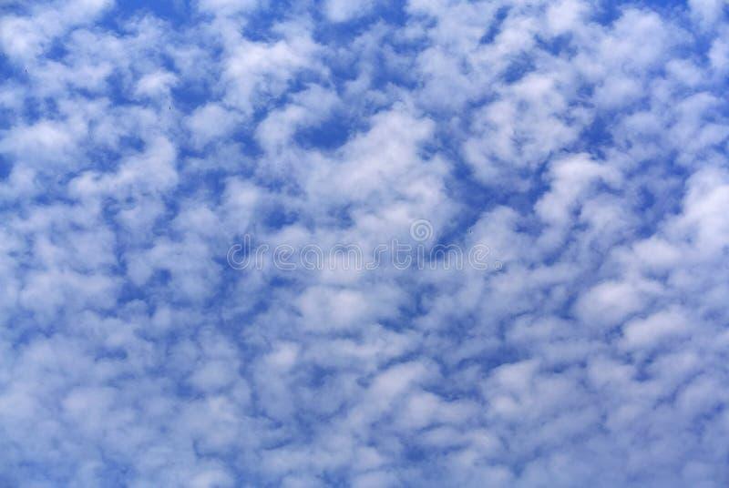 Fondo completo del marco del cielo nublado azul imagen de archivo