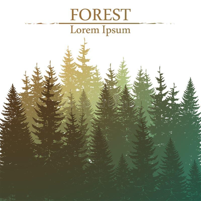 Fondo conífero salvaje del bosque libre illustration