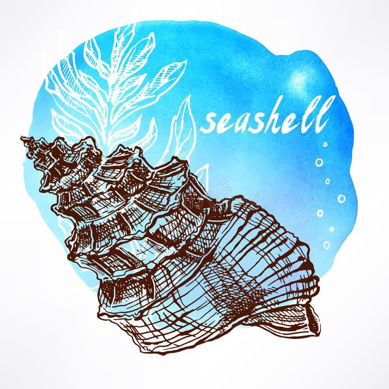 Fondo con alga e le coperture - 1 royalty illustrazione gratis