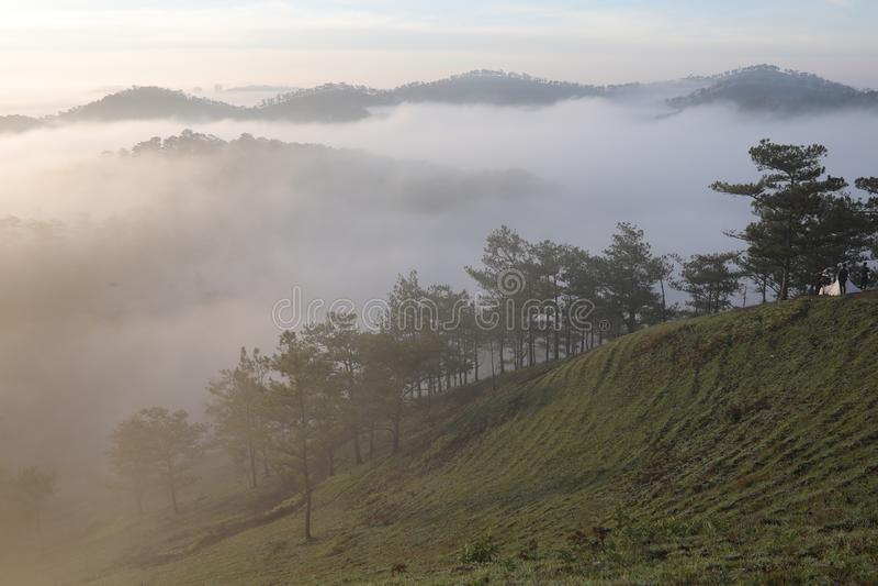 Fondo con aria fresca, luce magica e la foresta della copertura della nebbia densa nel plateau alla parte 3 di alba immagine stock libera da diritti
