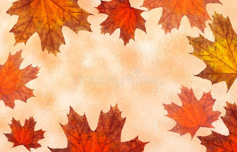 Fondo con follaje del otoño Fondo con las hojas de arce del color rojo Ilustración ilustración del vector