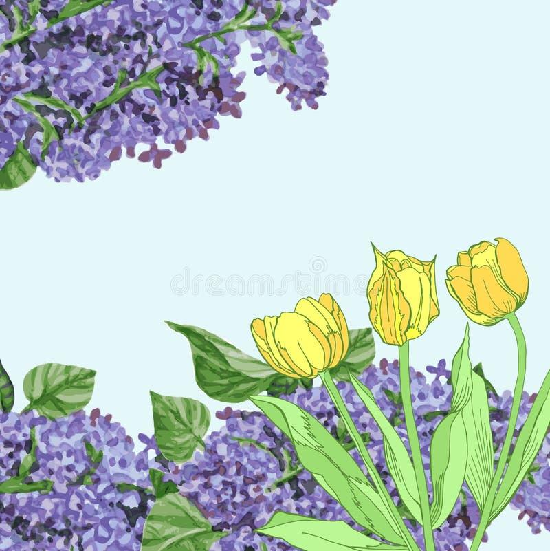 Fondo con i tulipani ed il lillà gialli illustrazione di stock