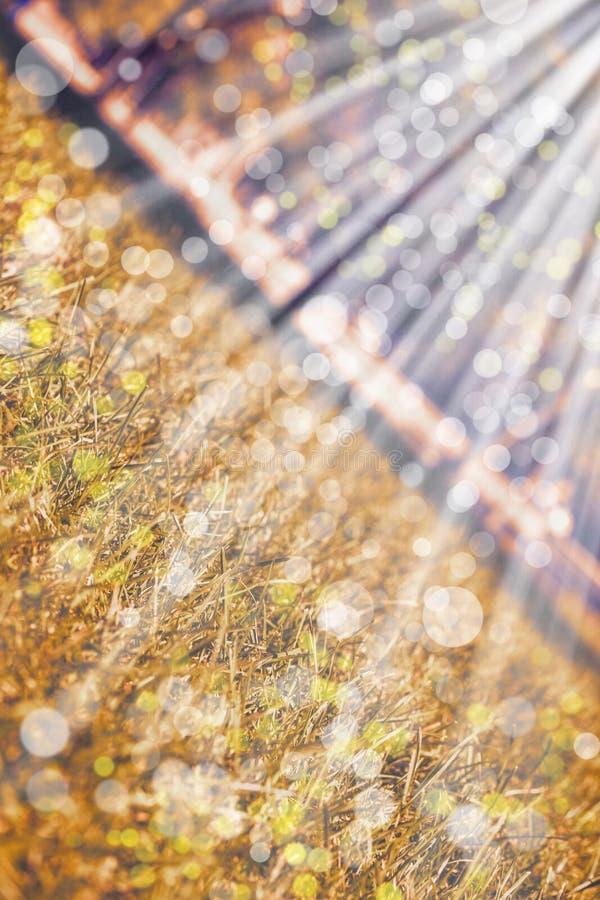 Fondo con il paesaggio beige di autunno Vista diagonale immagine stock libera da diritti