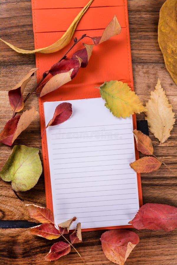 Fondo con il tema di autunno fotografia stock