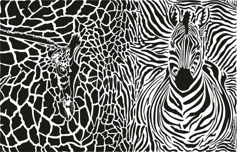Fondo con la cebra y la jirafa stock de ilustración