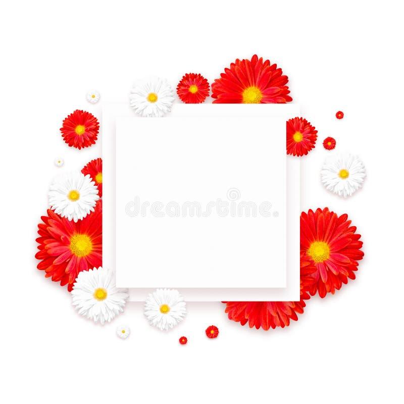 Fondo con la flor colorida hermosa Wallpaper los aviadores, invitación, carteles, folleto, descuento del vale fotografía de archivo libre de regalías