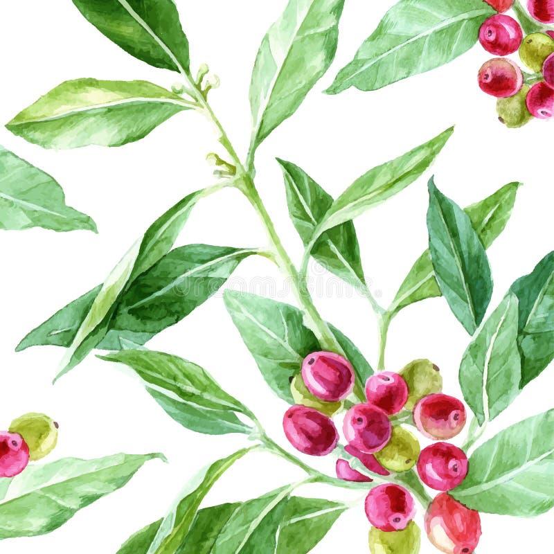 Fondo con la planta dibujada mano del café de la acuarela libre illustration