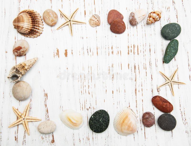 Fondo con las conchas marinas y las estrellas de mar fotografía de archivo