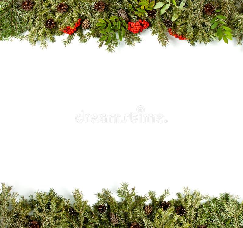 Fondo con las decoraciones, baya del acebo, isolat de la Navidad de los conos foto de archivo libre de regalías