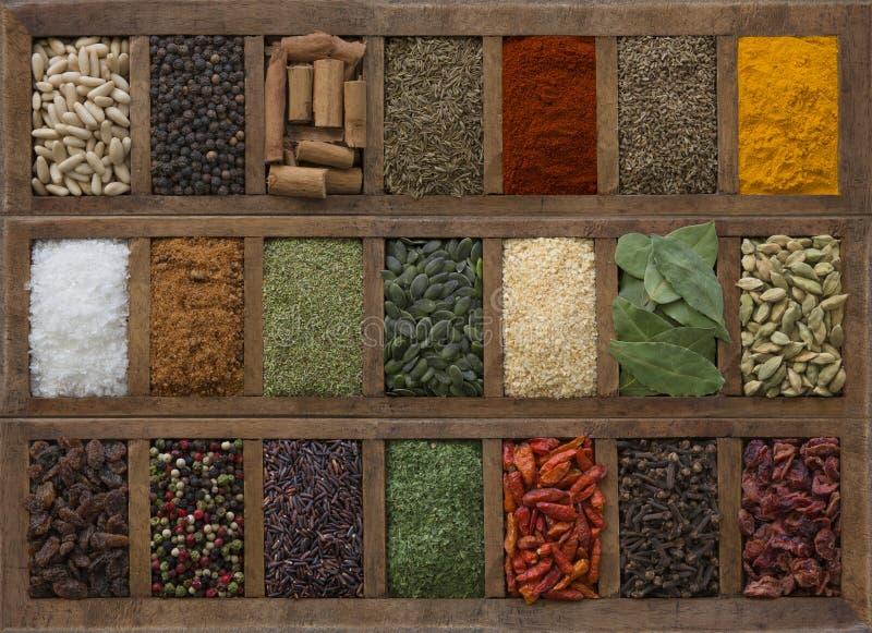 Fondo con las diversas especias y semillas imagen de archivo libre de regalías