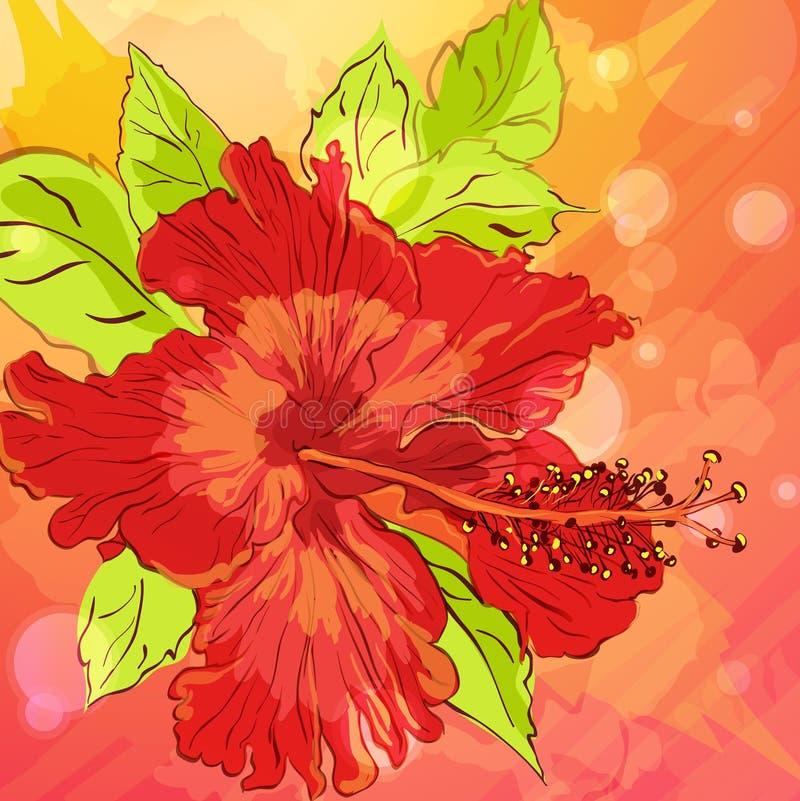 Fondo Con Las Flores Drenadas Mano Imágenes de archivo libres de regalías