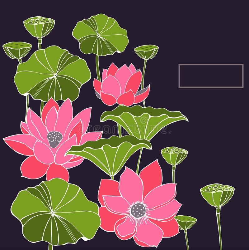 Fondo con las hojas, las flores y las vainas de la semilla de Lotus stock de ilustración