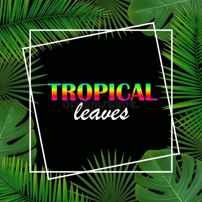 Fondo con las hojas tropicales foto de archivo
