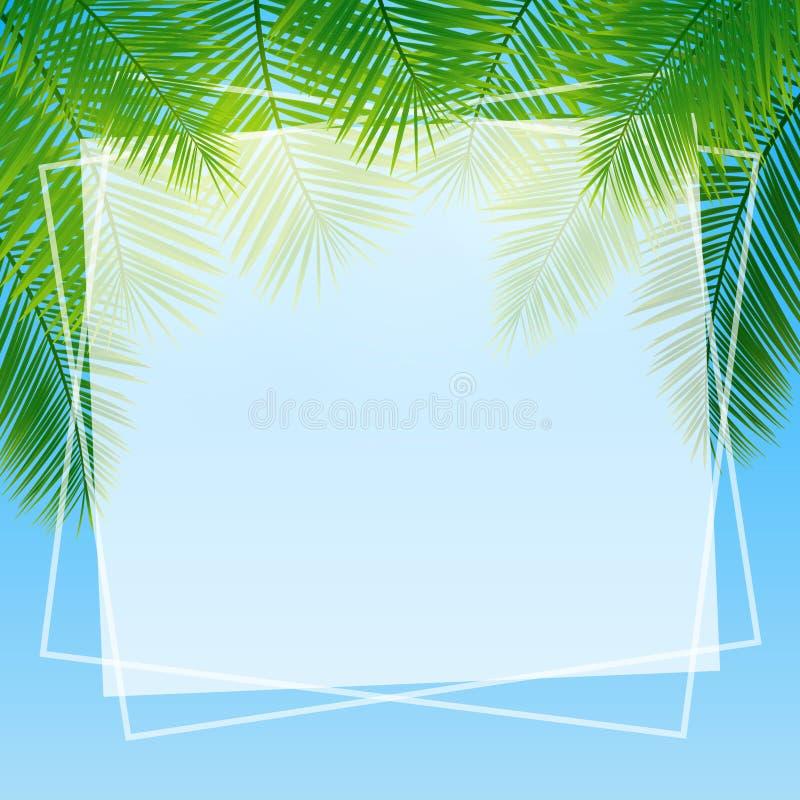 Fondo con las hojas tropicales verdes de palmeras foto de archivo