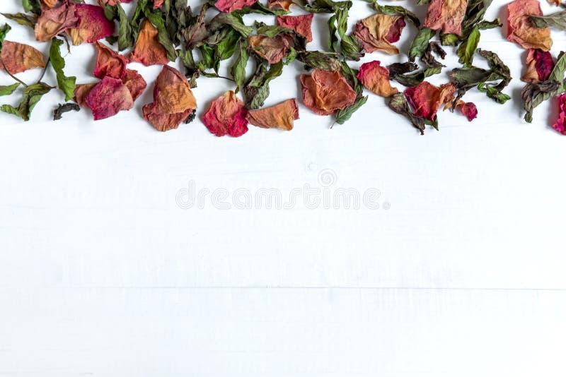 Fondo con las hojas y los pétalos de rosa secados Concepto con los pétalos color de rosa secados Foto arriba Capítulo para la tar foto de archivo libre de regalías