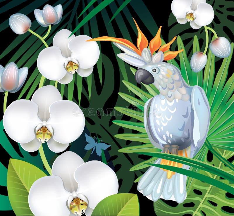Fondo con las plantas tropicales de la selva stock de ilustración