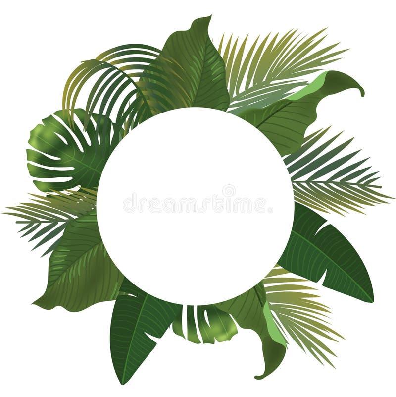 Fondo con las ramas de hoja de palma verdes realistas en el fondo blanco Endecha plana, visión superior ilustración del vector