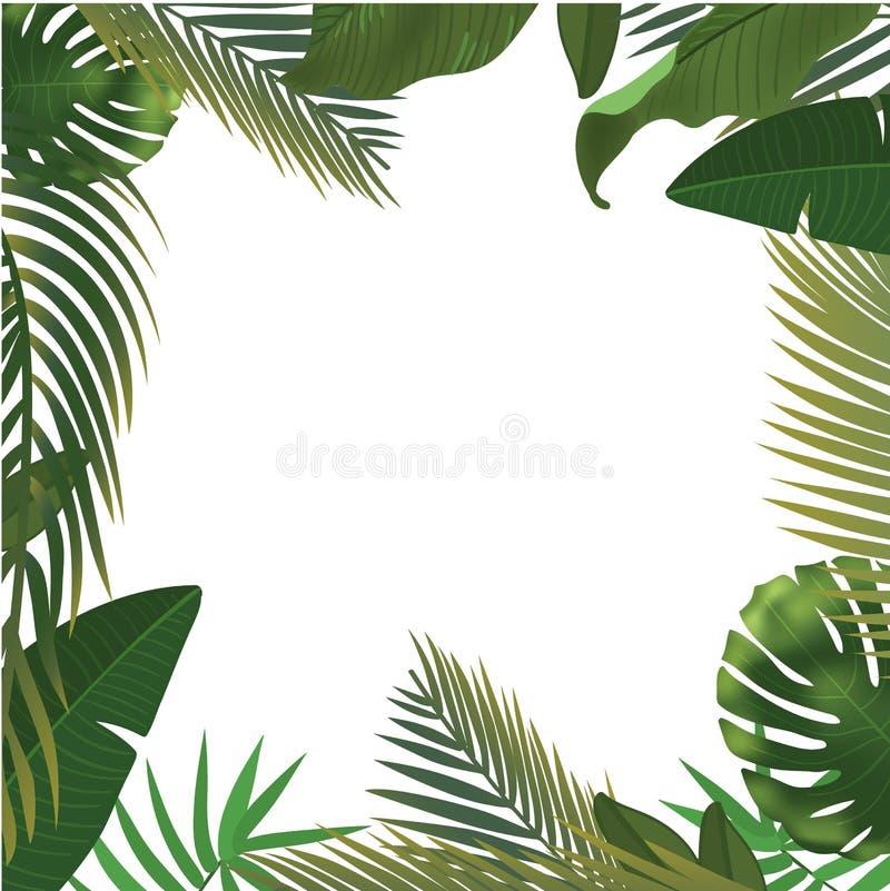 Fondo con las ramas de hoja de palma verdes realistas en el fondo blanco Endecha plana, visión superior stock de ilustración