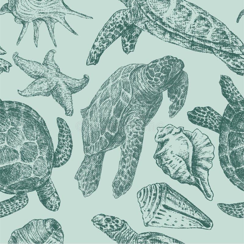 Fondo con las tortugas de un mar ilustración del vector