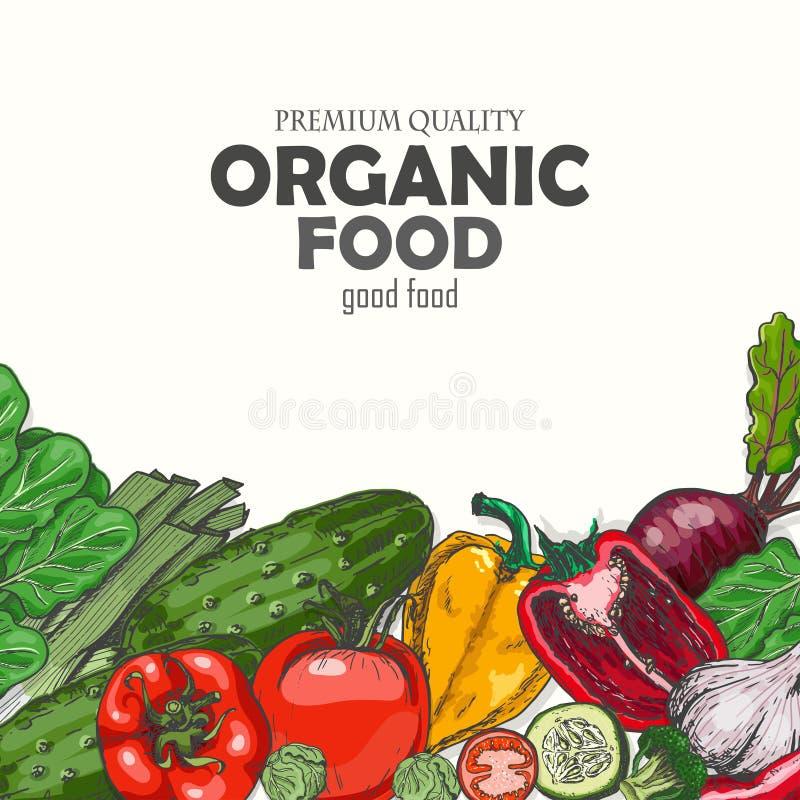 Fondo con las verduras coloreadas stock de ilustración