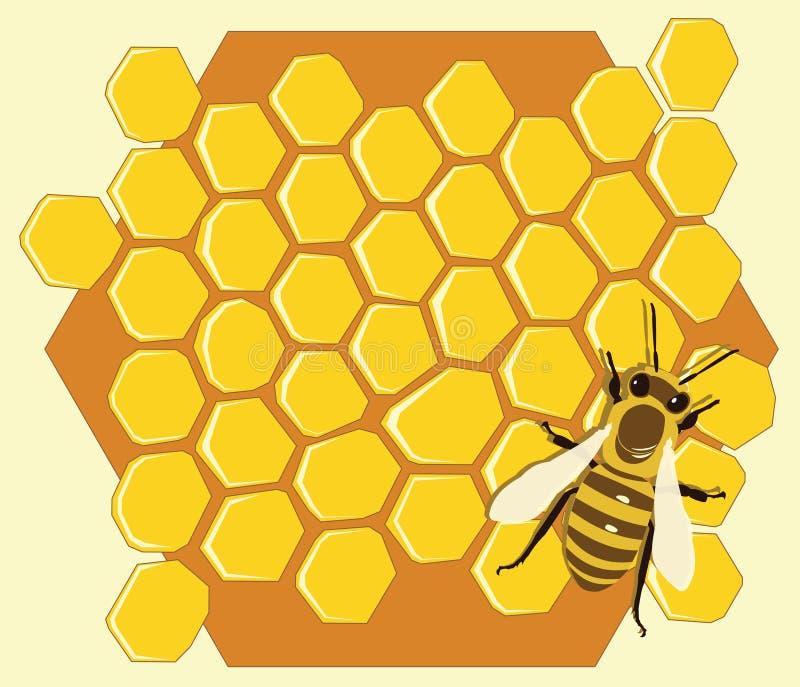 Fondo con le api ed i favi illustrazione vettoriale
