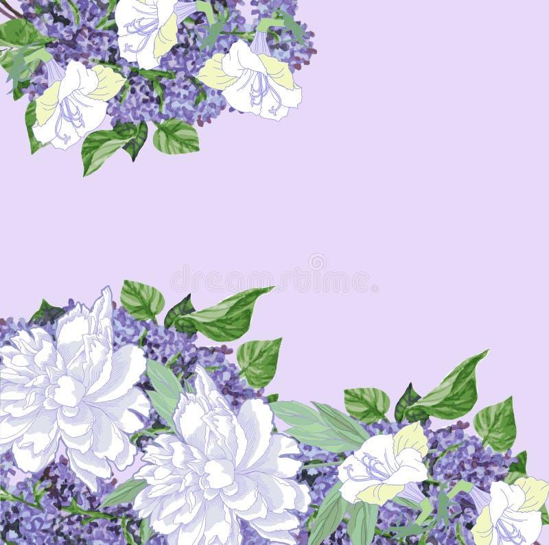 Fondo con le peonie ed il lillà bianchi illustrazione di stock