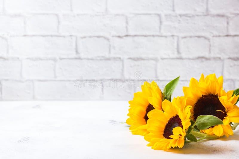 Fondo con los girasoles amarillos frescos en una tabla de cocina blanca fotos de archivo libres de regalías