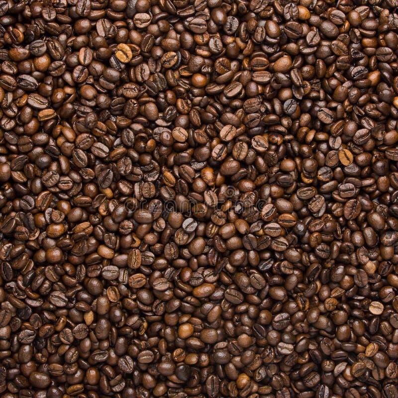 Fondo con los granos de café imagen de archivo libre de regalías