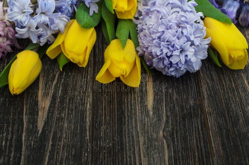Fondo con los tulipanes y los jacintos fotografía de archivo