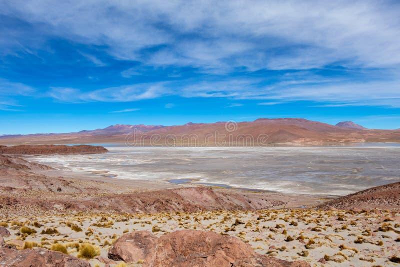 Fondo con paesaggio sterile del deserto nel boliviano le Ande, nella riserva naturale Edoardo Avaroa fotografie stock