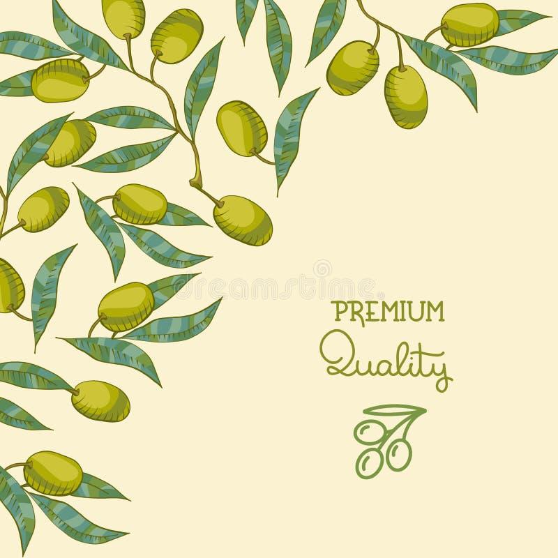 Fondo con ramo di ulivo royalty illustrazione gratis