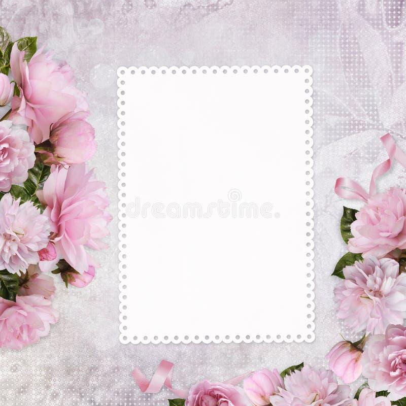 Fondo congratulatorio con una tarjeta con el espacio para el texto o las fotos y las rosas rosadas de la frontera ilustración del vector