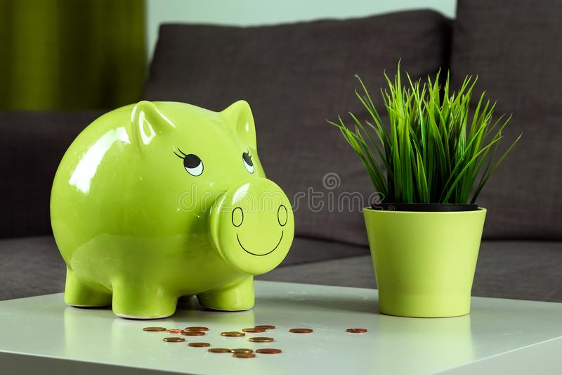 Fondo creativo, caja de dinero verde del cerdo en fondo gris El concepto de dinero de ahorro, ahorros, cerdo guarro, presupuesto  foto de archivo libre de regalías