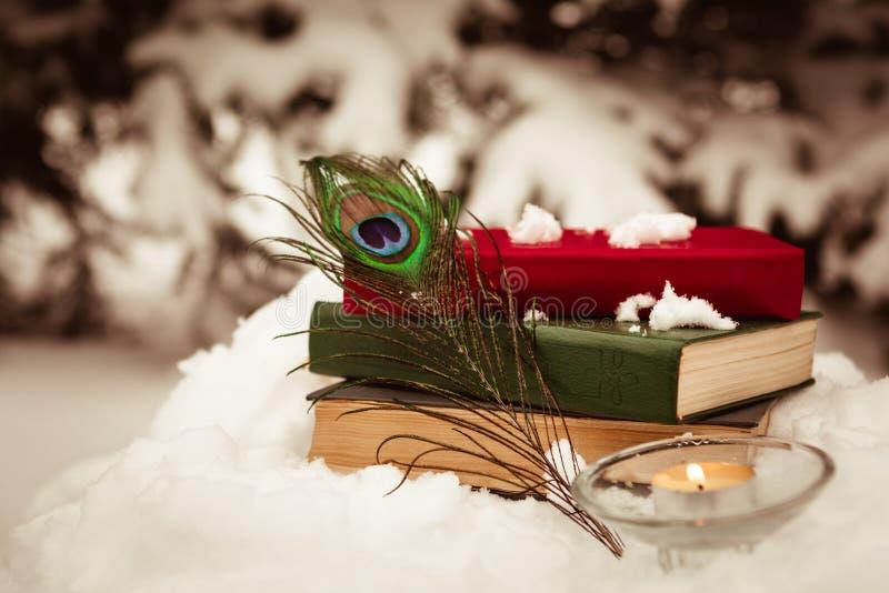 Fondo d'annata con i vecchi libri sulla neve immagini stock libere da diritti