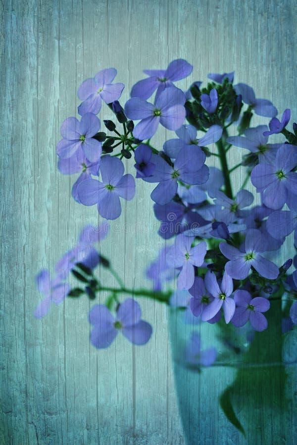 Fondo d'annata con i wildflowers immagine stock libera da diritti
