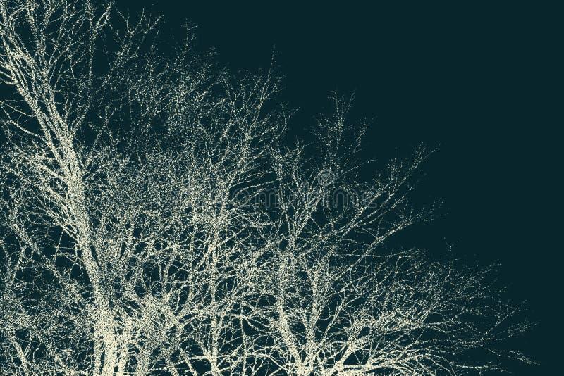 Fondo d'annata della foresta fotografie stock